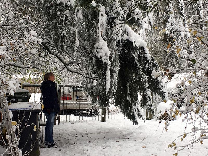 wintereinbruch2