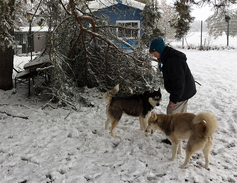 wintereinbruch3
